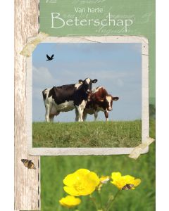 Beterschap heren 1